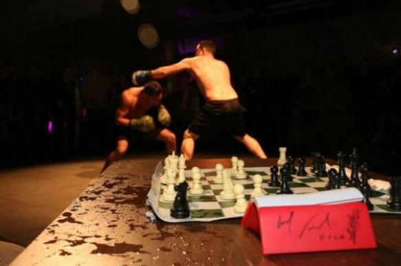 Новый вид спорта шахбокс - что это?. 402873.jpeg