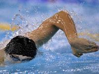 Россия впервые примет чемпионат мира по водным видам спорта. 241876.jpeg