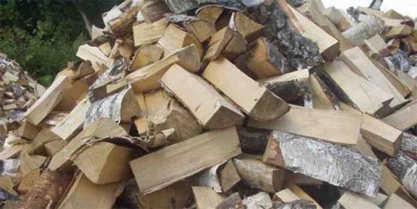 Новый премьер Финляндии оказался изобретателем дровяного автодвигателя. дрова