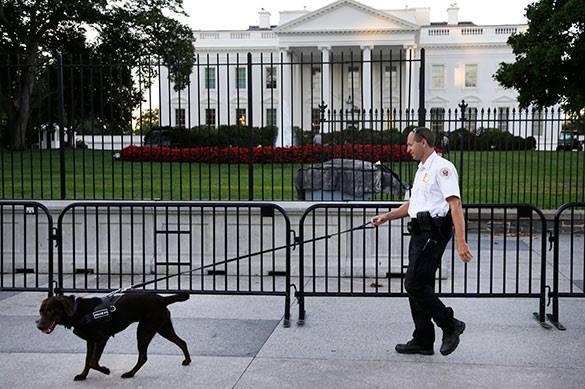 Перепрыгнувший ограду Белого дома американец будет три года находиться под надзором. 321881.jpeg
