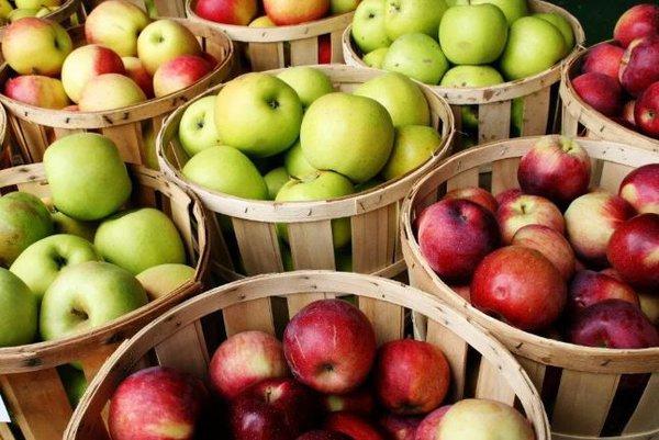 Яблочная терапия. яблоки
