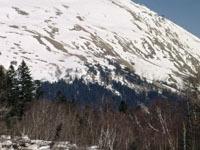 На Эльбрусе нашли останки советских воинов. 243898.jpeg