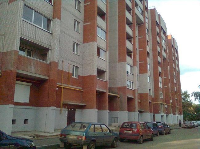 Алена Никитина: Пока есть спрос на недвижимость, она не будет дешеветь. 307899.jpeg