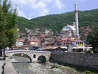 Свиной грипп добрался до Албании