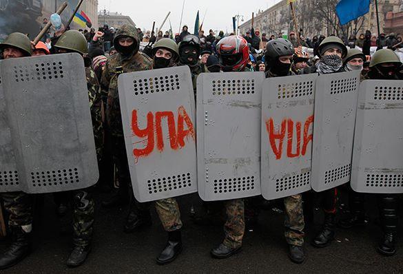 Правозащитник: У Украины нет своей истории, поэтому так много фриков.