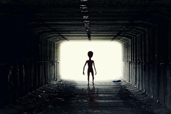 Астроном Сет Шостак предсказал, что вскором времени люди обнаружат внеземную жизнь