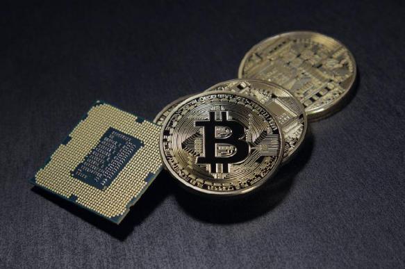 Большинство криптовалютных проектов перестанут существовать. 383906.jpeg