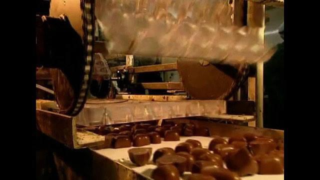 Шоколад станет дефицитным к 2020 году. 303910.jpeg