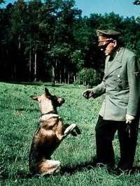 Гитлер с овчаркой Блонди