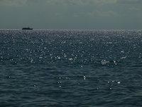 Танкер с нефтью сел на мель возле курильского острова. 254917.jpeg