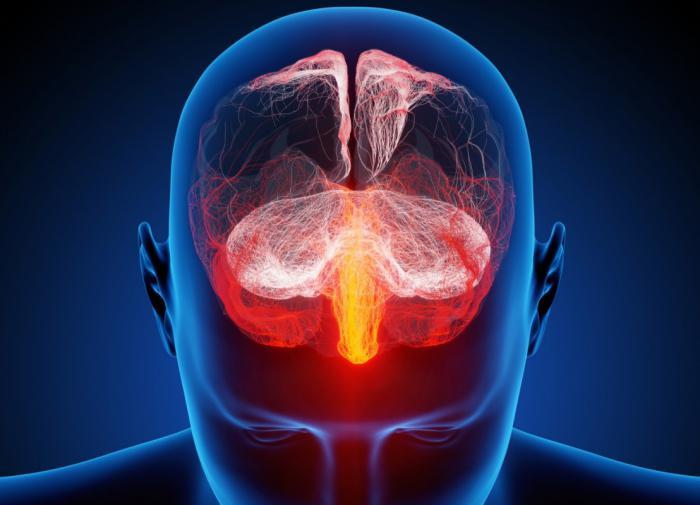 воспаление мозговой оболочки