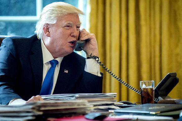 Скандал: что американский комик тайком узнал у Трампа. 388921.jpeg