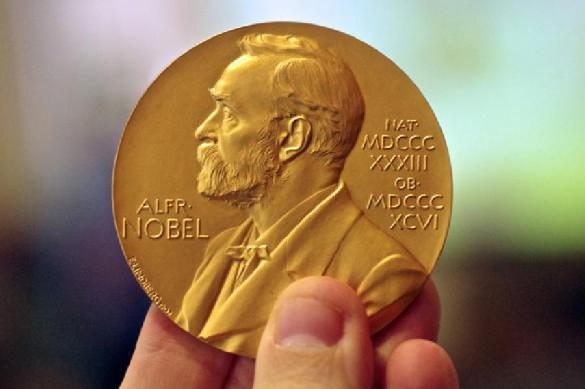 Стали известны лауреаты Нобелевской премии мира. 392921.jpeg