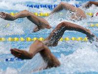 Российские пловцы завоевали четыре медали в первый день чемпионата Европы. 250924.jpeg