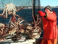 Задержанные в Охотском море браконьеры безуспешно ищут шанс