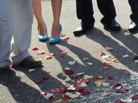 Гости свадьбы погибли под колесами лихой иномарки. 246927.jpeg