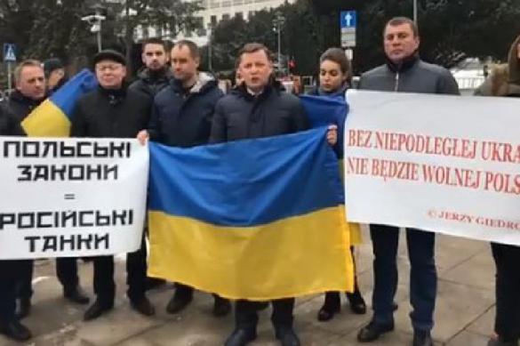 """Украинские радикалы выступают против польского закона о запрете """"бандеровской идеологии"""". 382930.jpeg"""