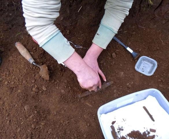 На древней берестяной грамоте обнаружены знаки препинания. 371931.jpeg