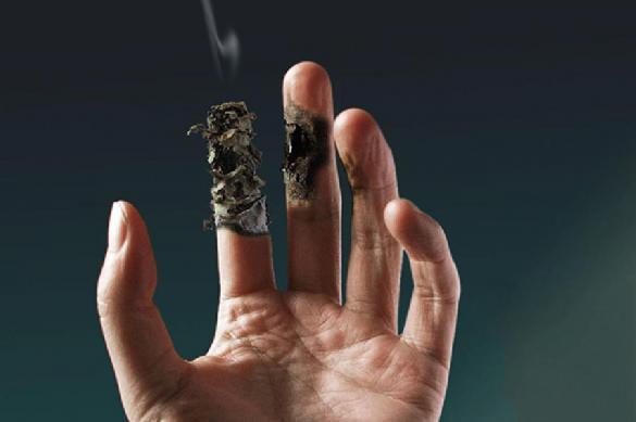 СМИ: сигареты в России будут продавать лишь в одной сети. 397934.jpeg