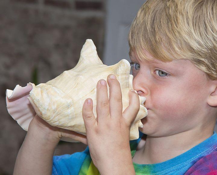 Дружно дуем в раковины: в Ки-Уэст (Флорида) снова запел рог. Оливер Стаурди - трехлетний конкурсант