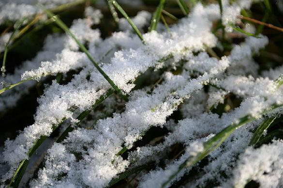 Гидрометцентр рассказал, когда Москву засыпет снегом. 377937.jpeg