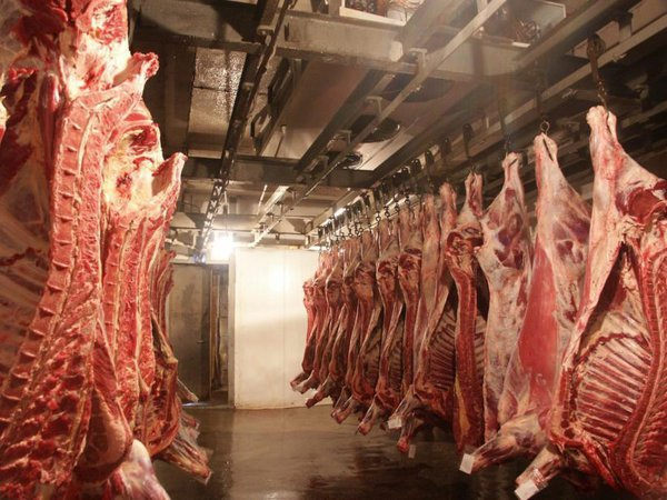 Есть ли в мясе мясо? Сомневаются все. гормоны в мясе