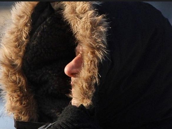 Первые морозы вызывают стресс организма. 394938.jpeg