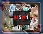 В Египте очередной человек заразился H5N1