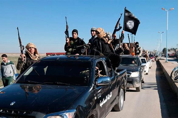 Ирак освобождает Мосул