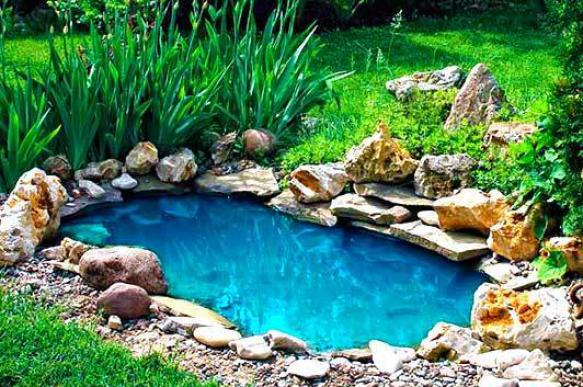 Применение старой ванны на даче. 397949.jpeg