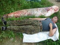 Тульский пасатель поймал двухметрового сома. 240950.jpeg