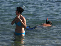 Туристам в отпуске поможет женьшень. otpusk