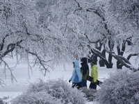 Прогнозы: Москва встречает февраль 20-градусным морозом. 253952.jpeg