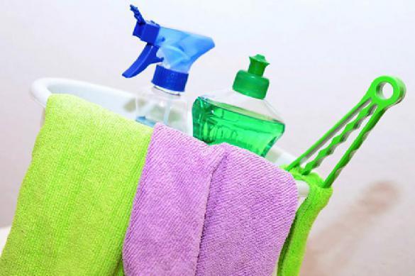 Ученые: как чистящие средства губят младенцев. 391952.jpeg