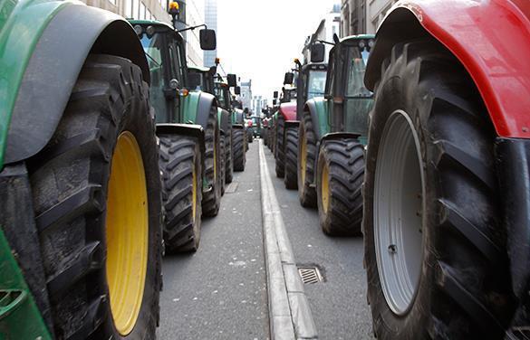 Фермеры Молдавии готовят акции протеста. Сельское хозяйство