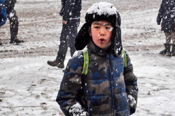 Под Читой дети ходят в школу пешком через лес из-за отмены автобуса. Под Читой дети ходят в школу пешком через лес из-за отмены автоб