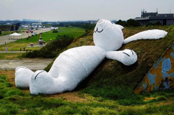 15 любопытных фактов о кроликах. 400957.jpeg