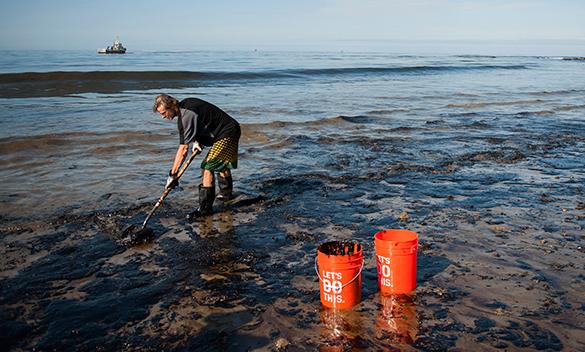 В Мексиканском заливе процветает планктон