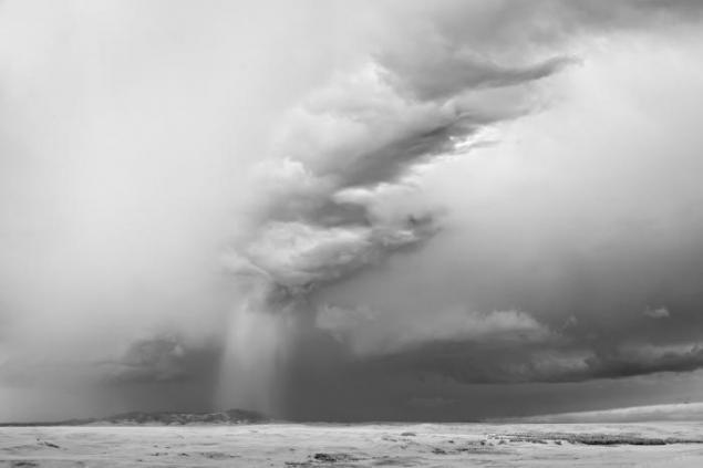 Брэда Питта обвинили в пиаре на помощи пострадавшим от урагана
