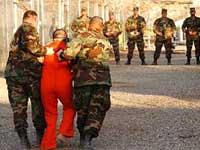 Пять процентов бывших узников Гуантанамо взялись за старое