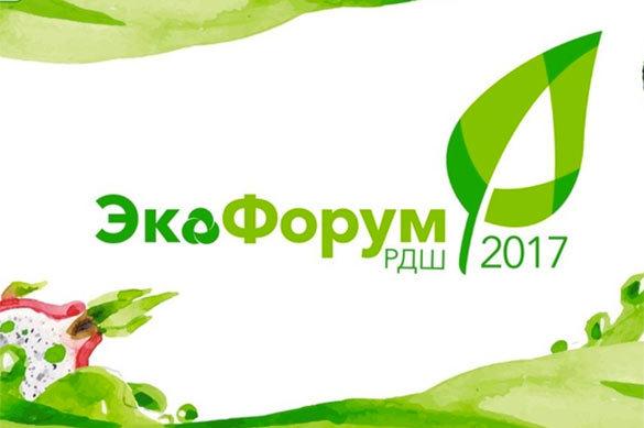 Экологический форум Российского движения школьников открылся в П