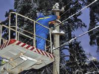 Тысячи жителей Кубани остались без света из-за снегопада. 252967.jpeg