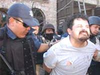 В Мексике задержаны 25 наркодельцов