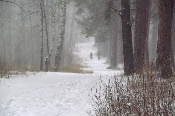 Зима в России продлится до конца марта. 397975.jpeg