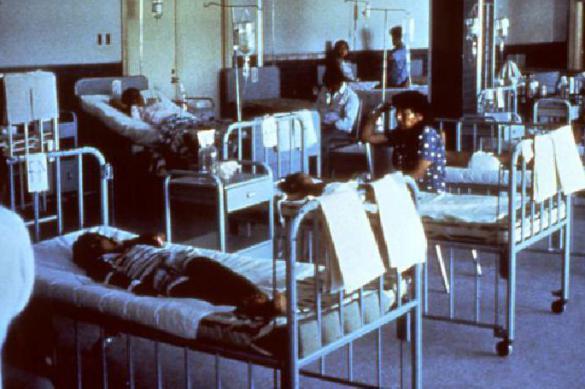 """Найдена """"родина"""" эпидемий холеры. 378977.jpeg"""