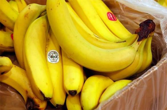 Как за две недели прийти к жизни без пестицидов и ГМО. Видео. 319979.jpeg