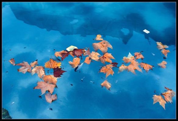 Под иным углом: фотографии, которые помогают ощутить вкус жизни. осень