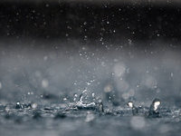 Прогнозы: в Москве будет прохладно и дождливо. 264981.jpeg