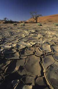 Засуха против Африки