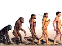 Турция отвергла теорию эволюции